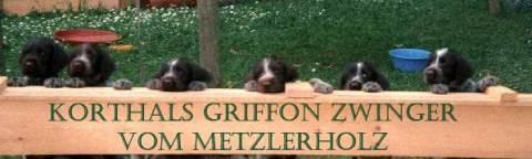 Korthals Griffon Zwinger vom Metzlerholz der Fam. Trommer